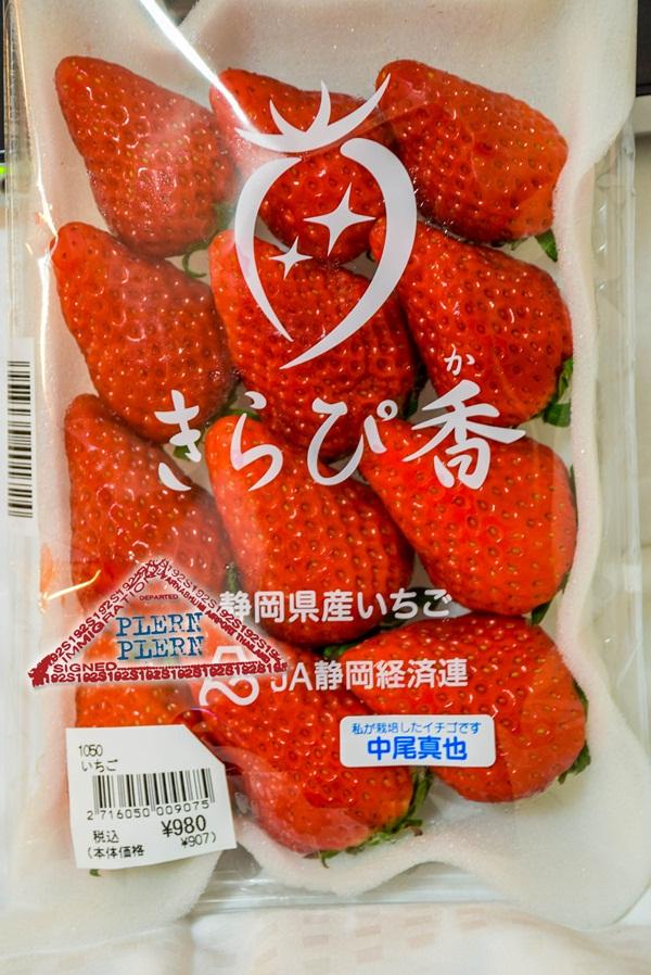 japan2015_016